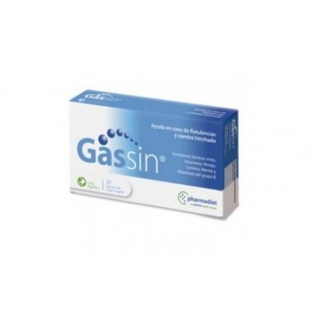 Comprar GASSIN 20cap.